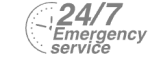 24/7 Emergency Service Pest Control in Farningham, Eynsford, Horton Kirby, DA4. Call Now! 020 8166 9746